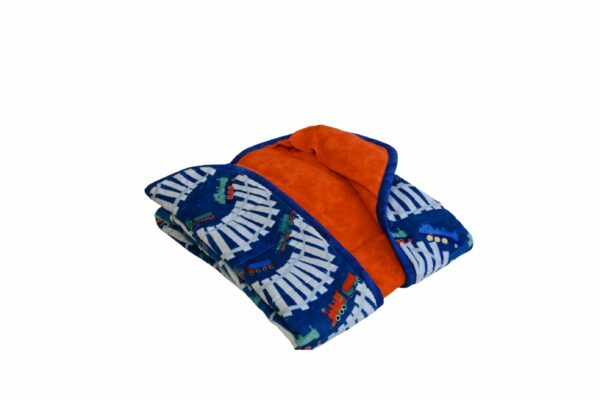 Weighted Blanket-Trains-20x50 4lbs