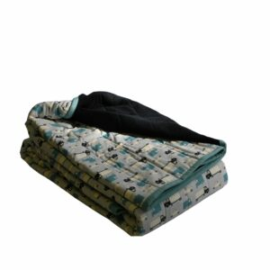 Weighted Blankets-45x70 16lbs- Trucks